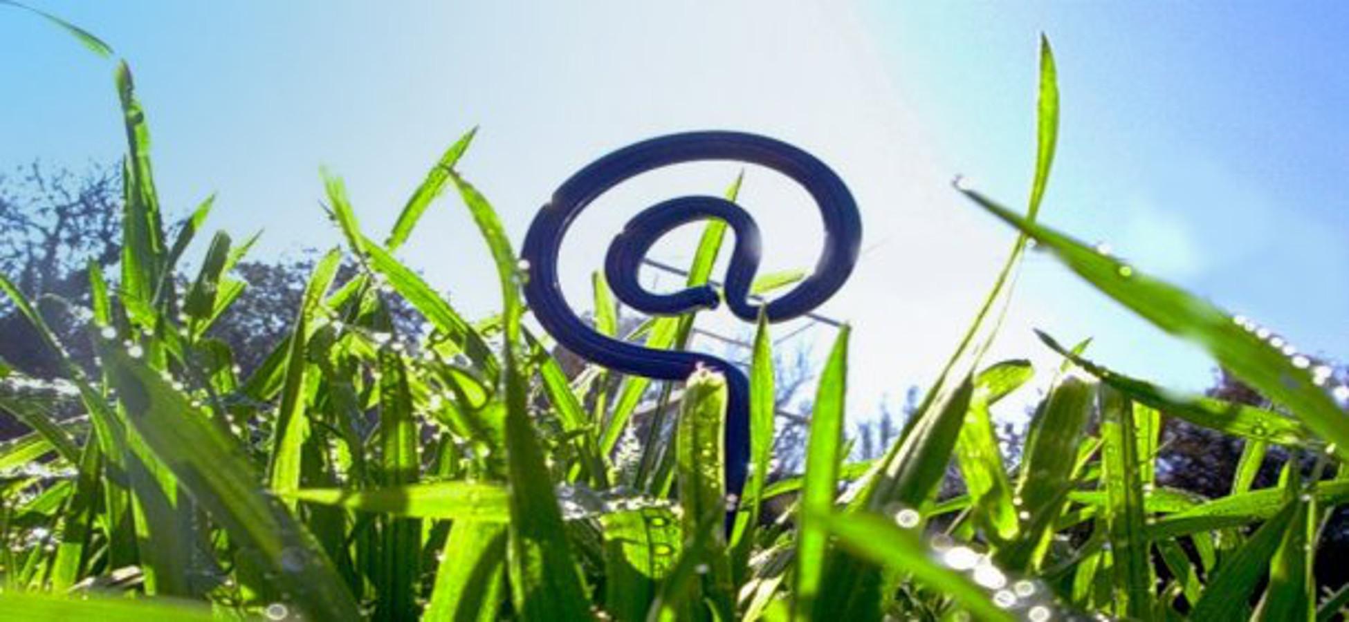 Agricoltura: parte piano giovani con 160 milioni