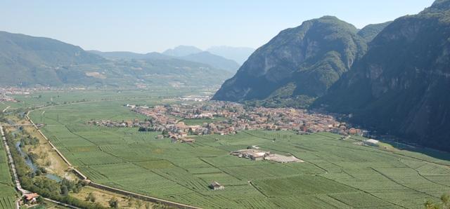 Trentino: Le Città del Vino per una viticoltura di qualità