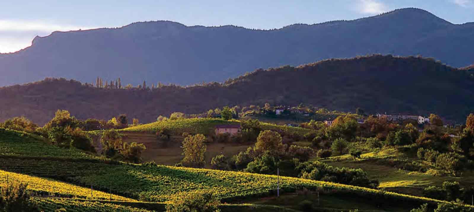 ProseccoShire, un progetto sensoriale per conoscere le colline candidate patrimonio UNESCO
