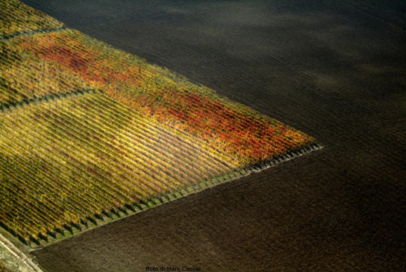 Le Città del Vino alle urne: Nord Italia