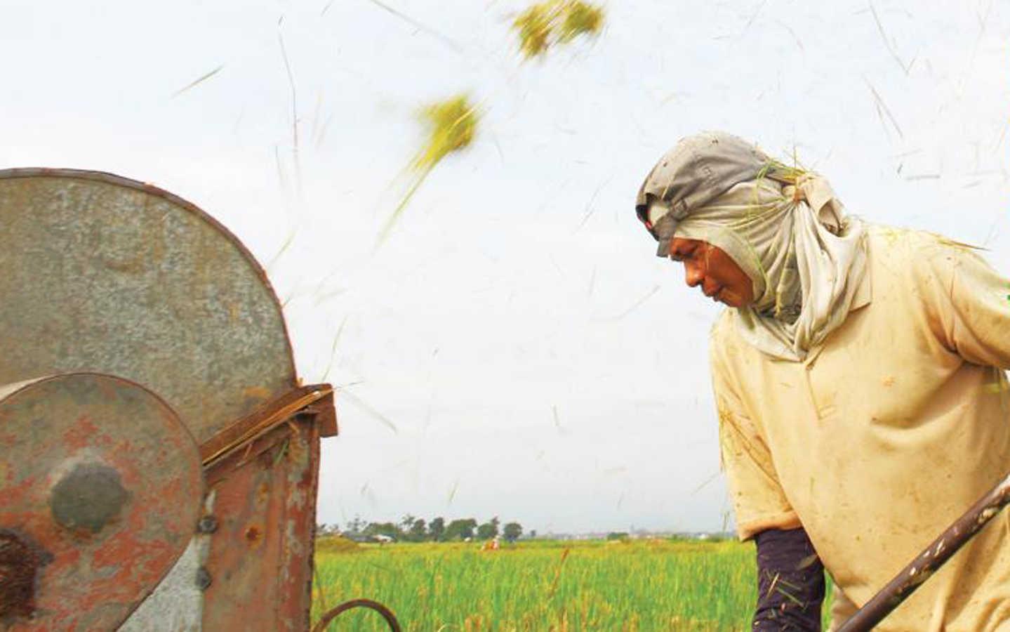 Investimenti a sostegno dello sviluppo rurale per abbattere la povertà