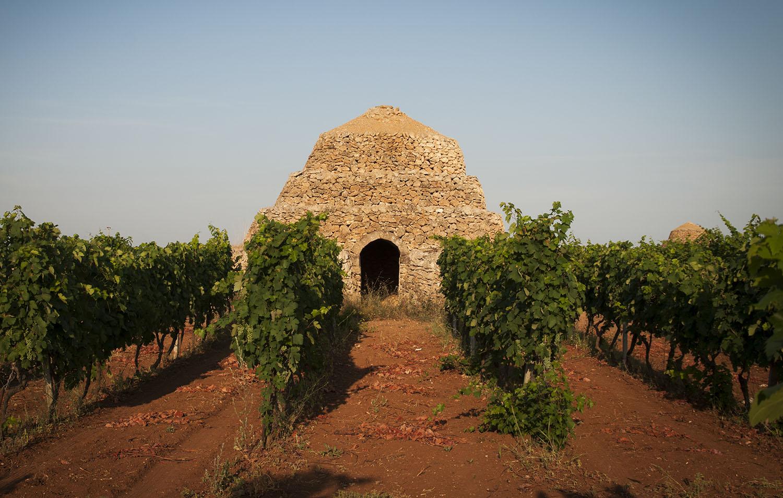 Profumi e sapori del Primitivo di Manduria al Merano WineFestival