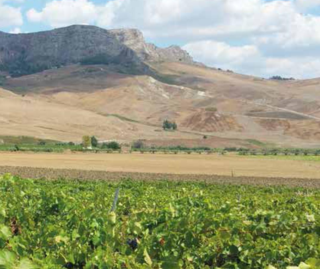 Sapori, colori e profumi della Sicilia