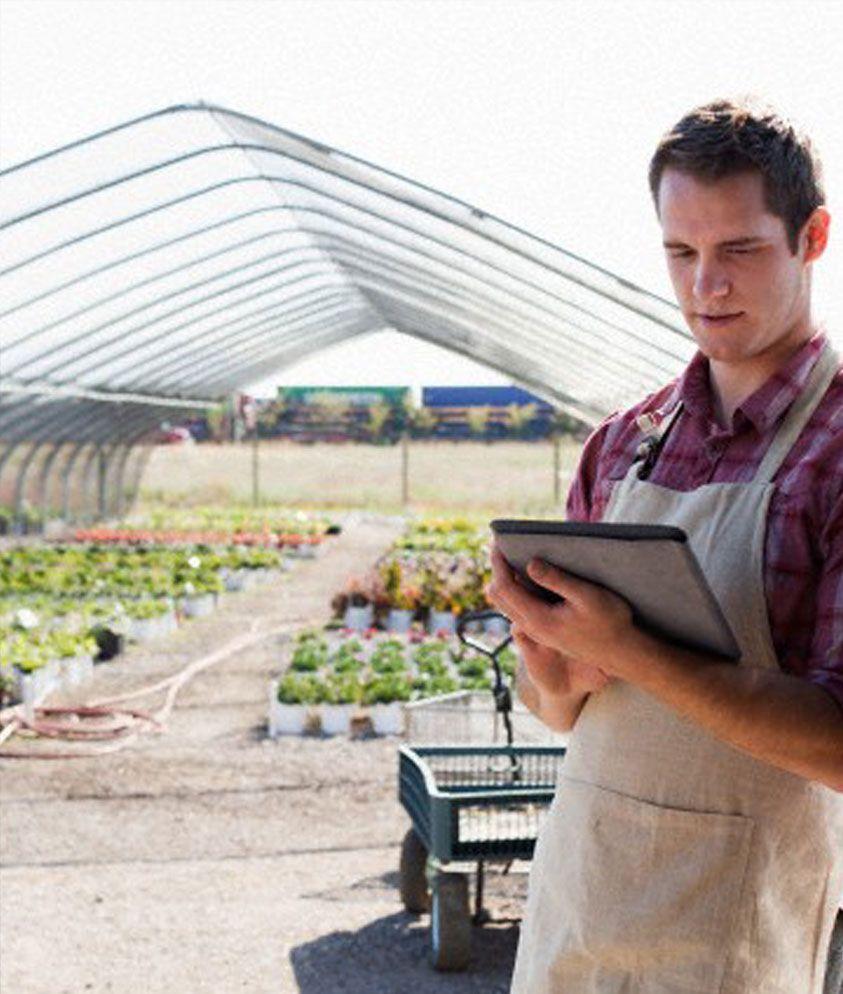 Sostegno per le imprese agroalimentari del Lazio
