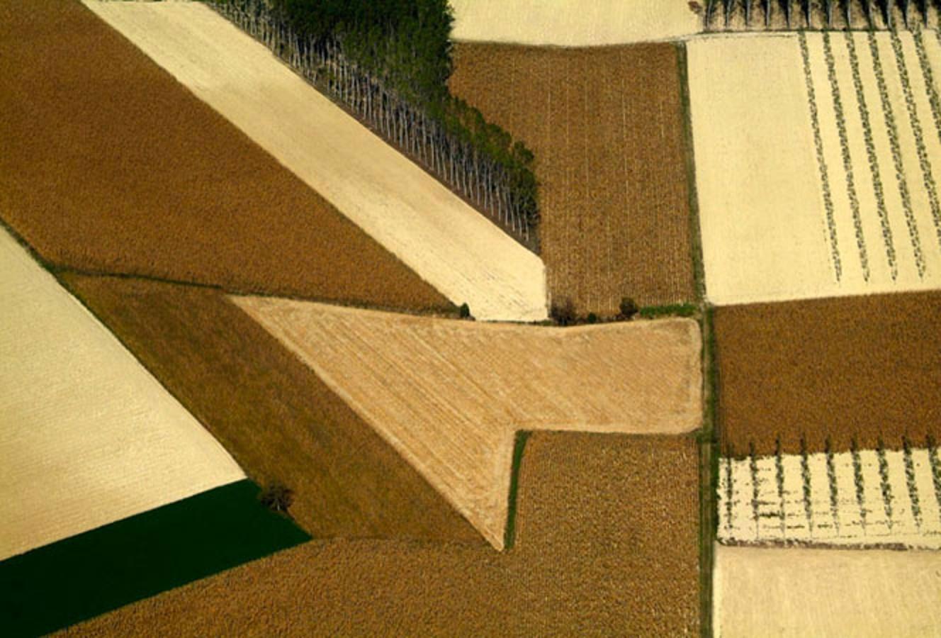 Winescapes, l'arte del paesaggio dal Monferrato al Forum Universale delle Culture Unesco