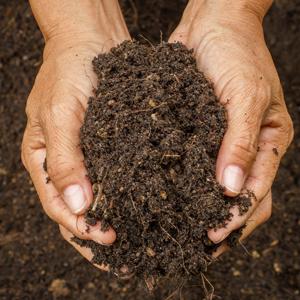 Biowaste,  una filiera virtuosa al servizio del paese e dell' ambiente