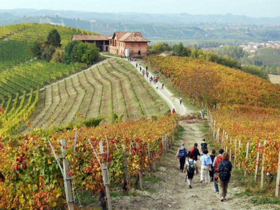 Italia enoturistica, il 2017 anno del sorpasso
