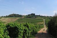 Enoregioni italiane: Oltrepo' Pavese
