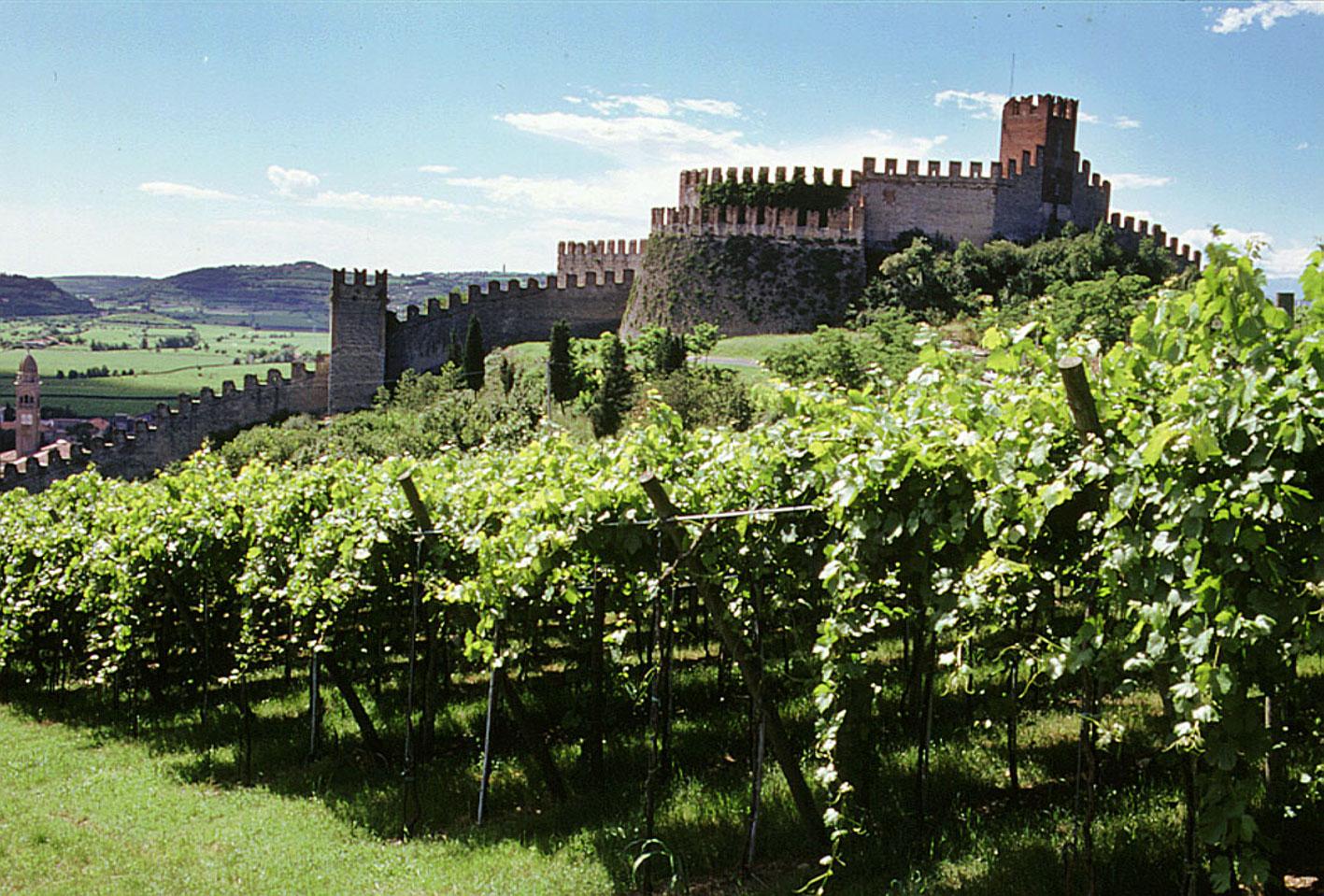 Enoregioni italiane: Terre del Soave