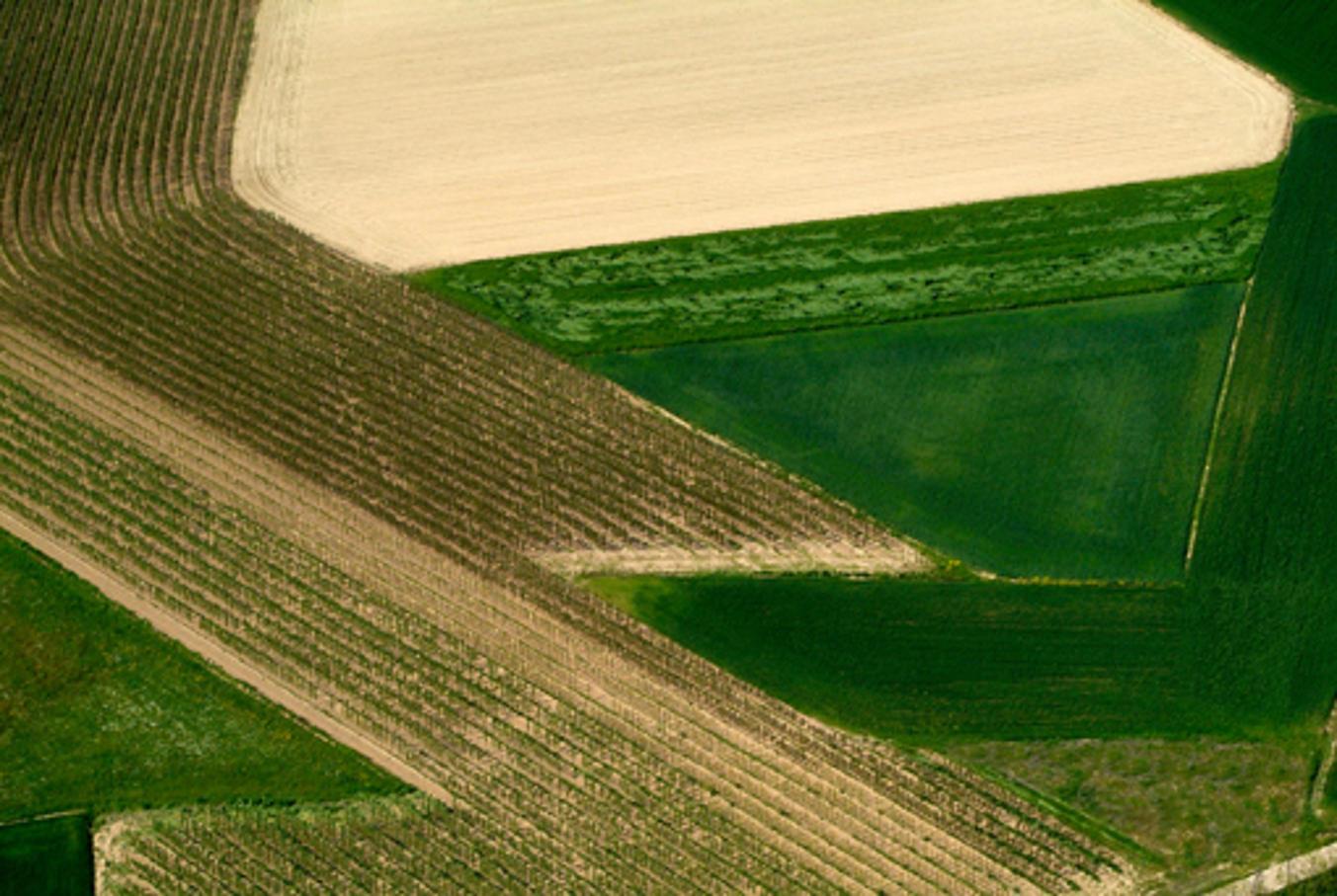 L'arte del paesaggio in Monferrato