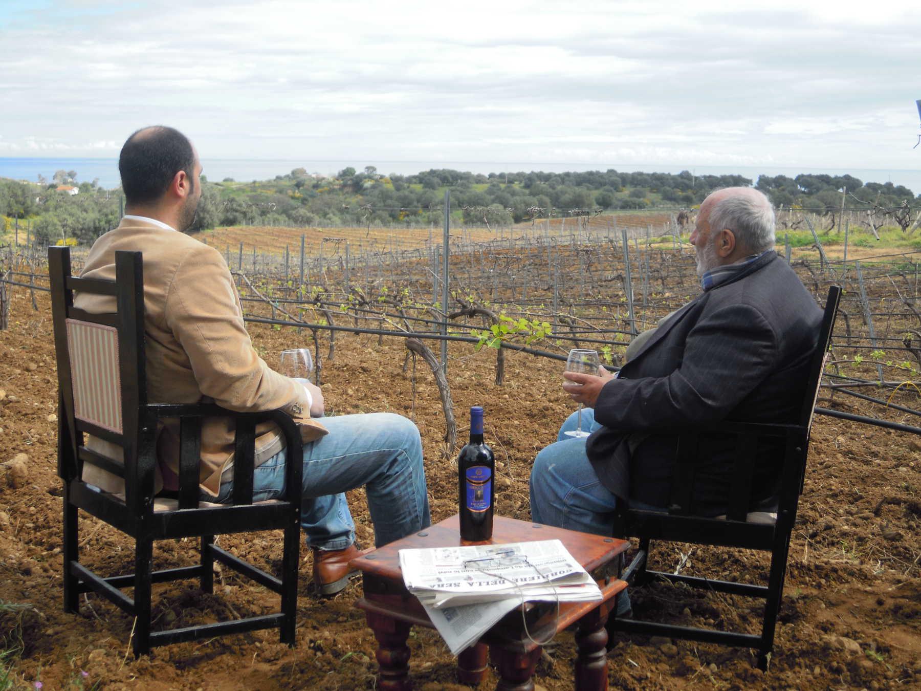 Un'ottima annata per i vini calabresi