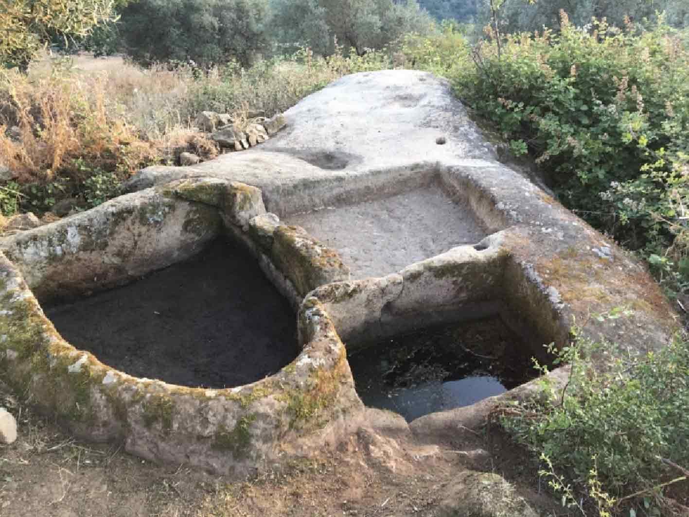 Palmenti rupestri, tesoro della Calabria