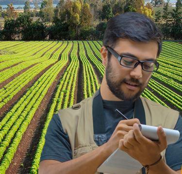 Media e comunicazione nell'agroalimentare e ambiente