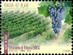 Enoregioni italiane: Terre del Cerasuolo