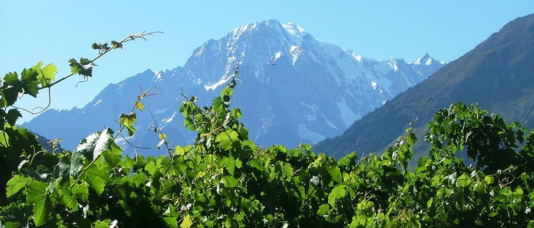 Valle d'Aosta tra sport, natura e vini