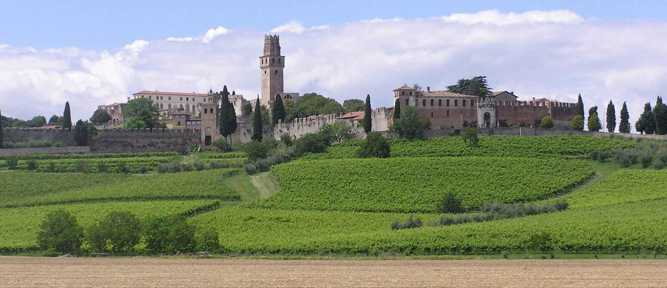 Susegana, il Veneto al 300x100