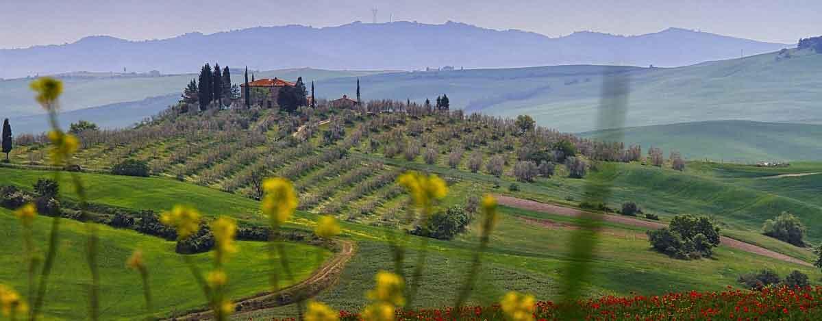 PIT Toscana, le Osservazioni dell'Associazione Città del Vino