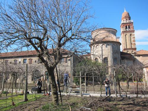 Vigne in città tra chiostri e conventi