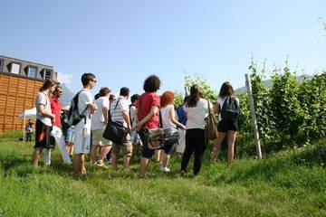 FEM inaugura la filiera formativa viticolo-enologica