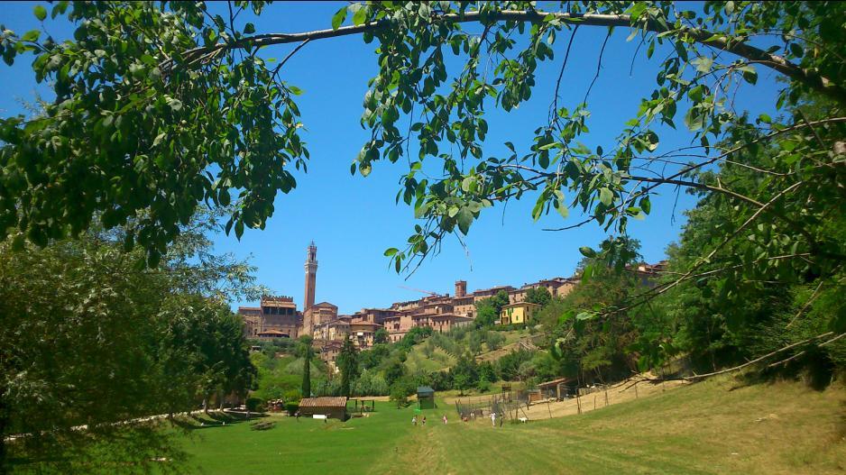 Città dell'Olio: a Siena festeggia il suo ventennale