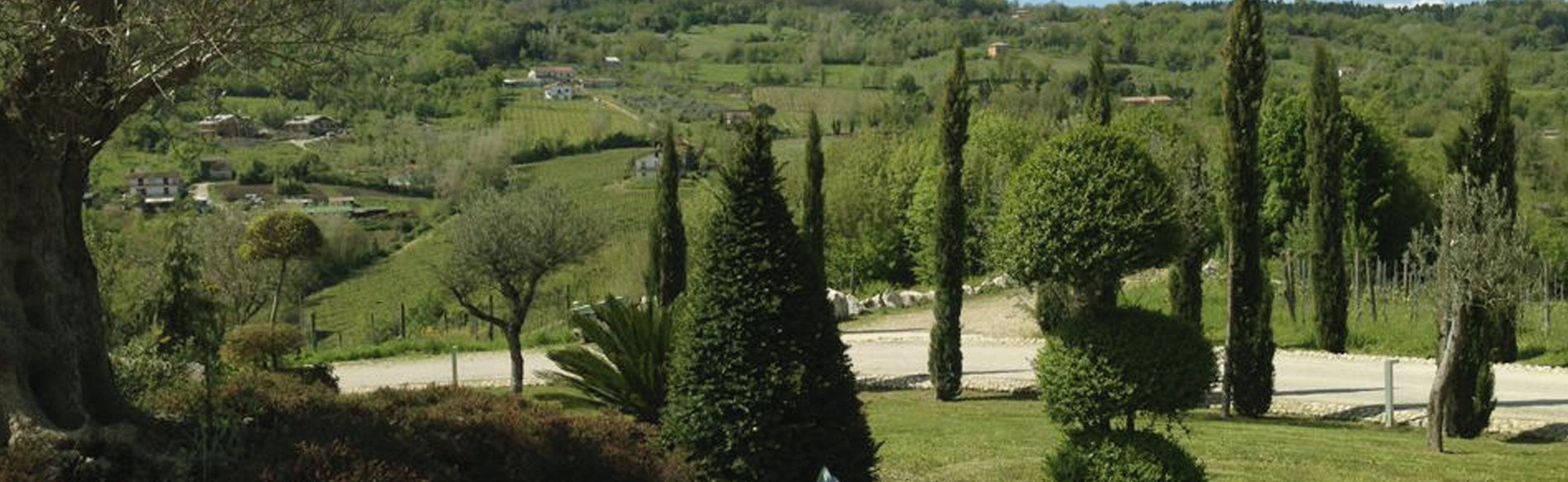 A Montefalcione il vino è ecosostenibile