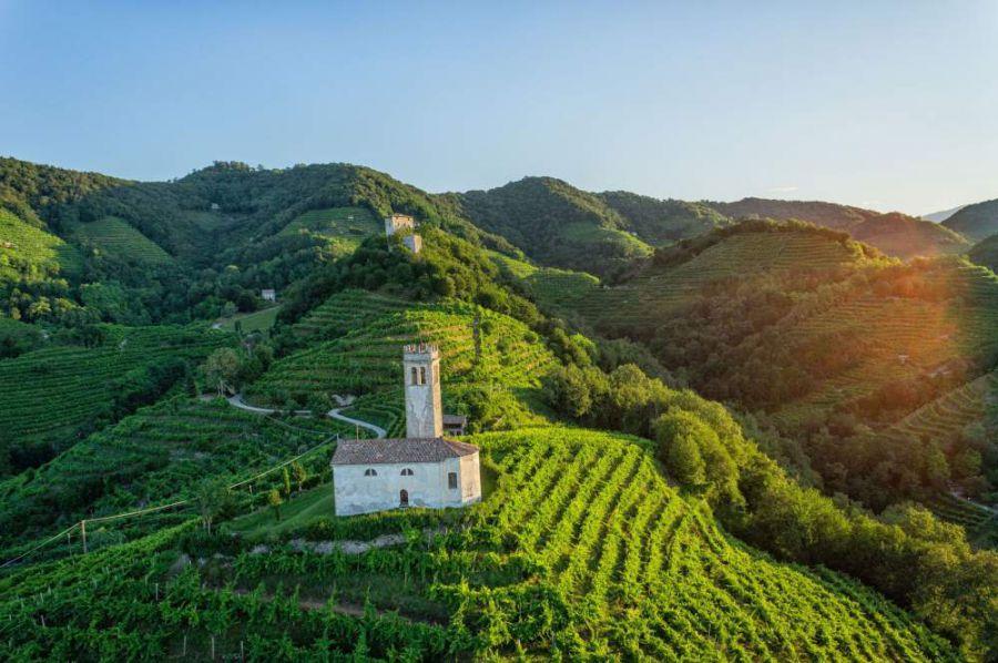 Il vino è cultura italiana