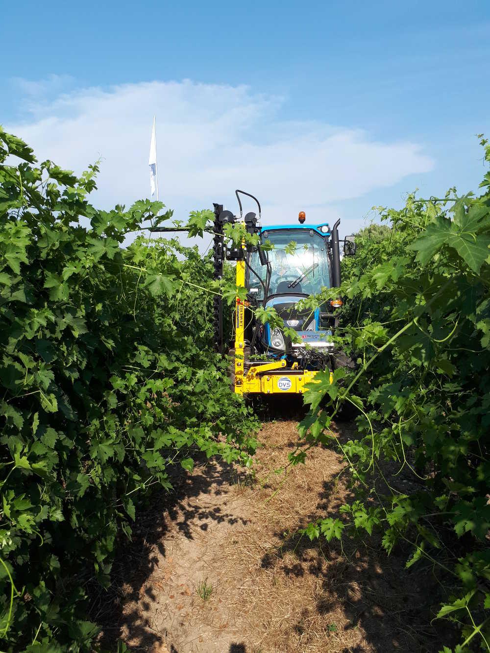 Agricoltura di precisione per uno sviluppo sostenibile