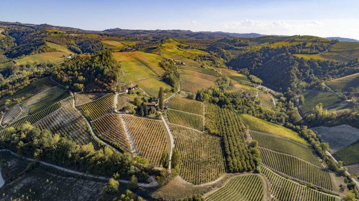 Piemonte: la chiusura della vendemmia 2019