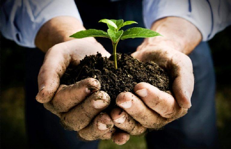 L'agricoltura torna protagonista