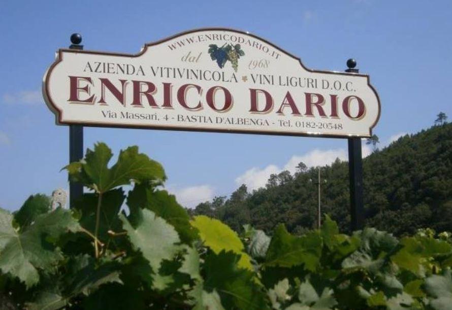 I vini della Riviera
