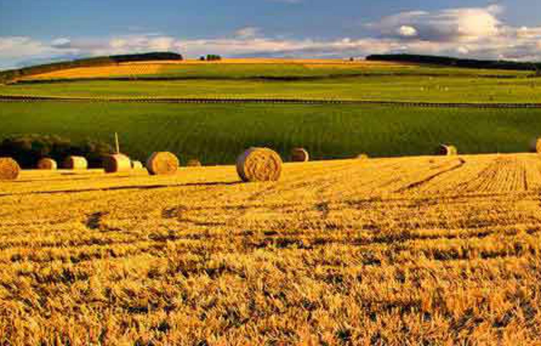 Via libera alla Direttiva Ue sugli OGM