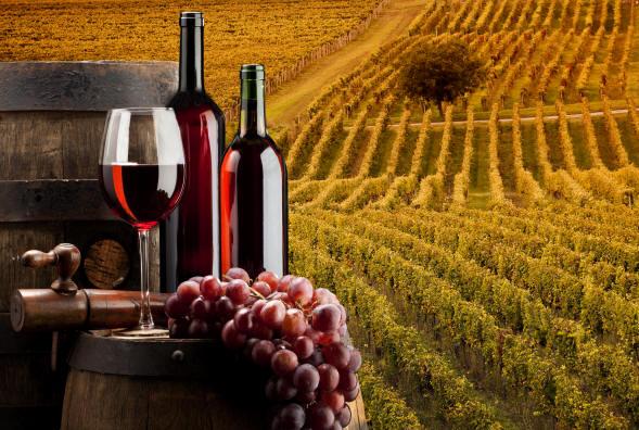 Tra Vinitaly ed Expo di Milano, gli appuntamenti del vino