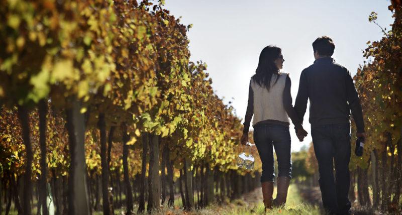 Rapporto sul Turismo del Vino in Italia, compila il questionario