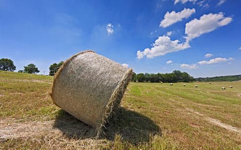 NO all'IMU agricola, un gran pasticcio