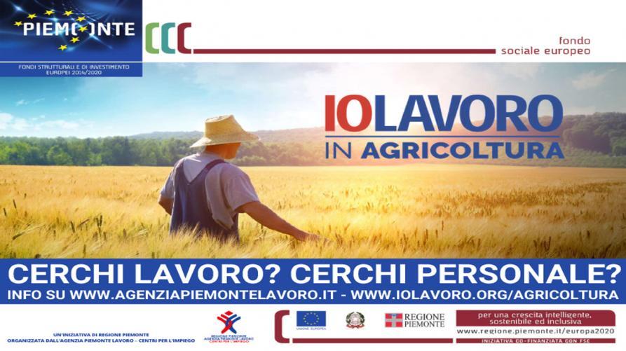 Piemonte. Agricoltura, aperte le candidature per attività stagionali urgenti