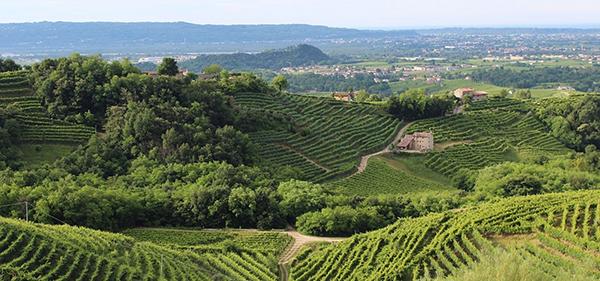Turismo: Italia affidabile secondo rapporto ENIT