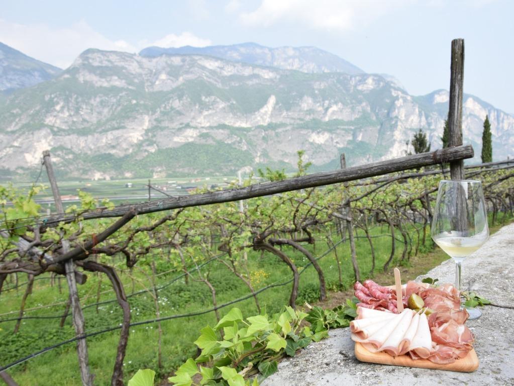 Strada Vino Trentino Bond, per sostenere le attività in fase di ripartenza