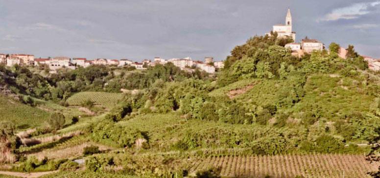 In Viaggio per le Città del Vino: Tollo