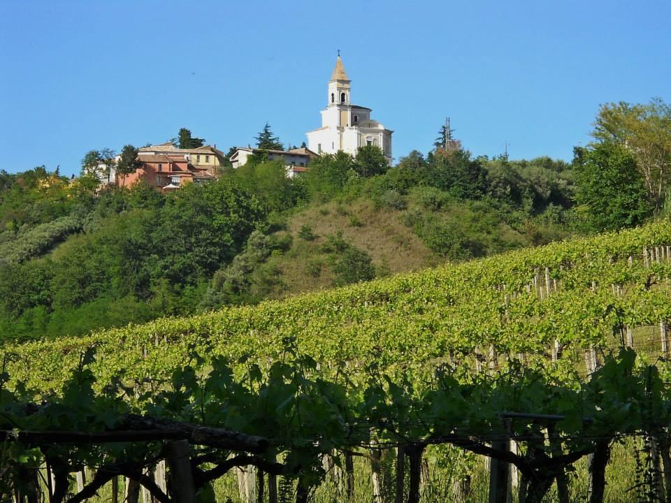 In Viaggio con le Città del Vino