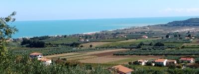 Mipaaf, dematerializzazione registri del vino