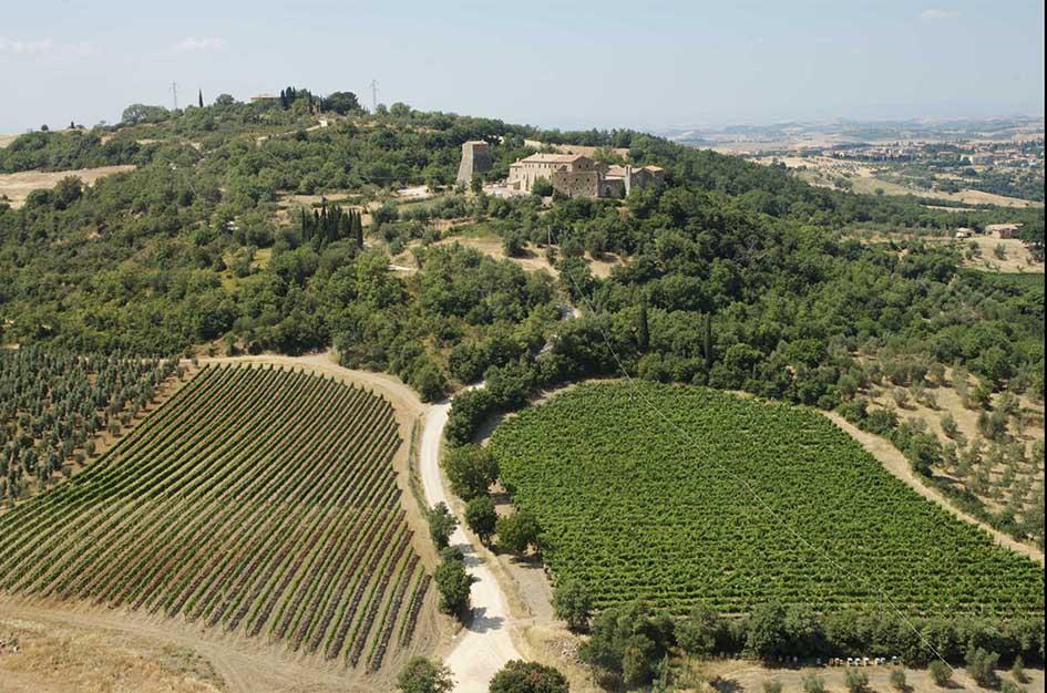 Orcia Wine Festival, viaggio nella Doc con panorama