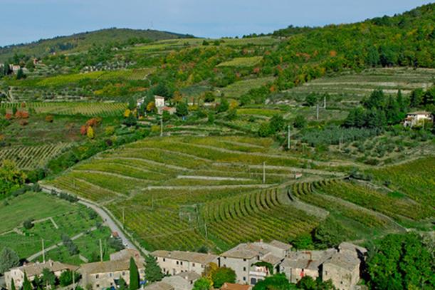 Nuovi paesaggi italiani nel  Registro nazionale dei paesaggi rurali