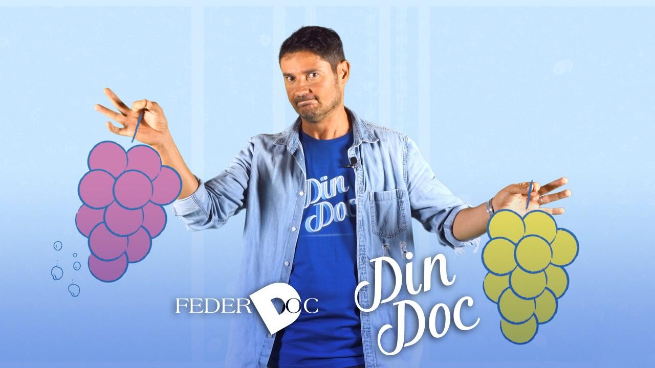 Din-Doc, il nuovo format che racconta il vino DOC