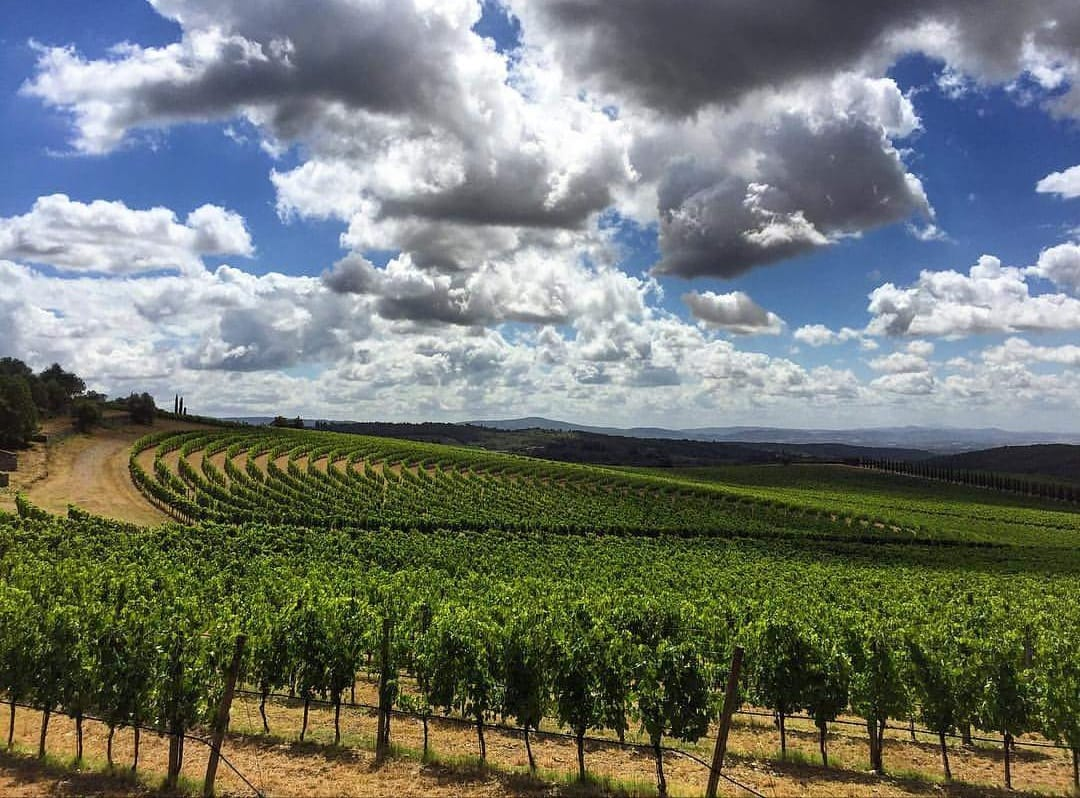 Città del Vino al tavolo del Mipaaf per l'enoturismo