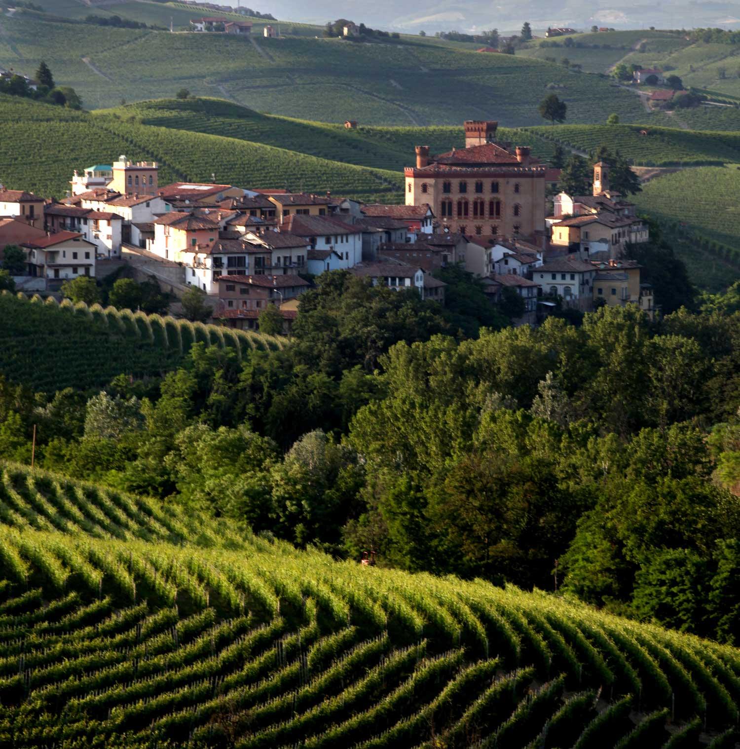Ai nastri di partenza Barolo Città Italiana del Vino 2021