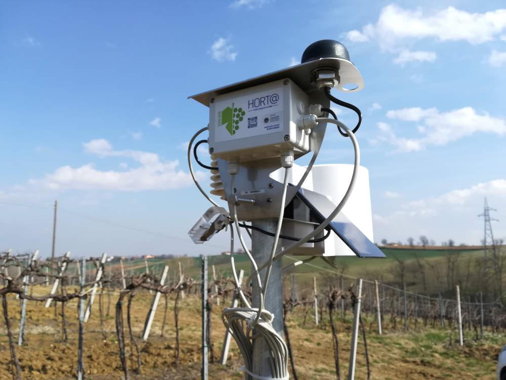 Vite.net: il sistema di supporto alle decisioni per la viticoltura
