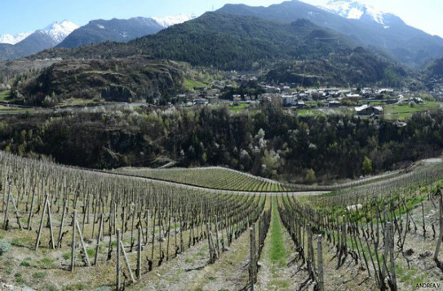 Auguri al Valle d'Aosta o Vallée d'Aoste