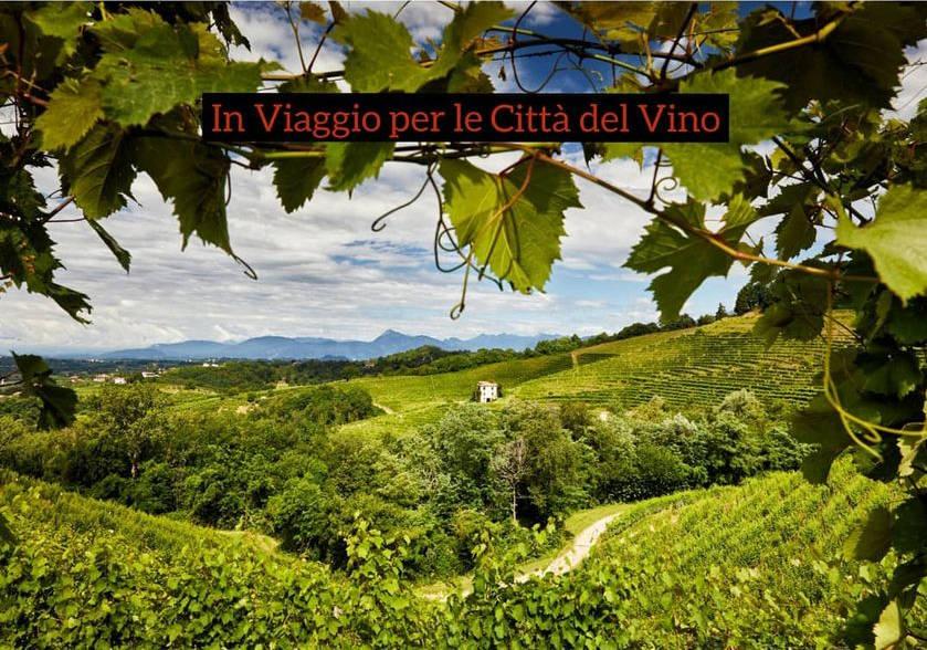 Come si comunica un territorio del vino: il progetto multimediale di Povoletto