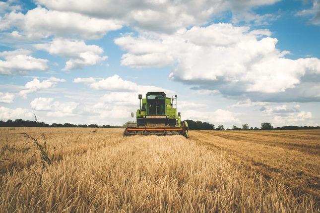 Agevolazioni per giovani agricoltori