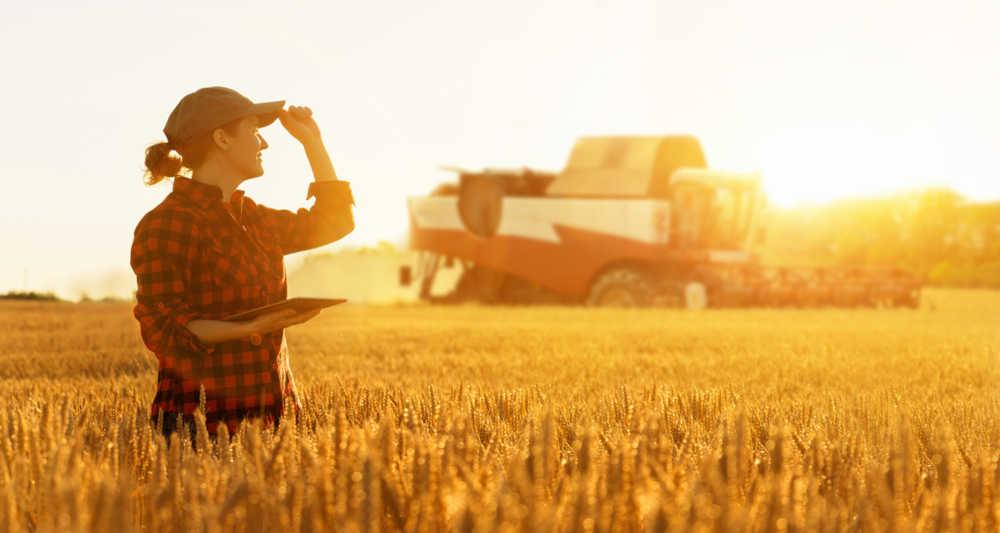2mld e semplificazioni per l'agroalimentare